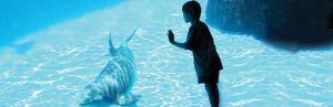 santa-cruz-california-monterey-bay-aquarium-top