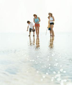 0306-summer-beach_300